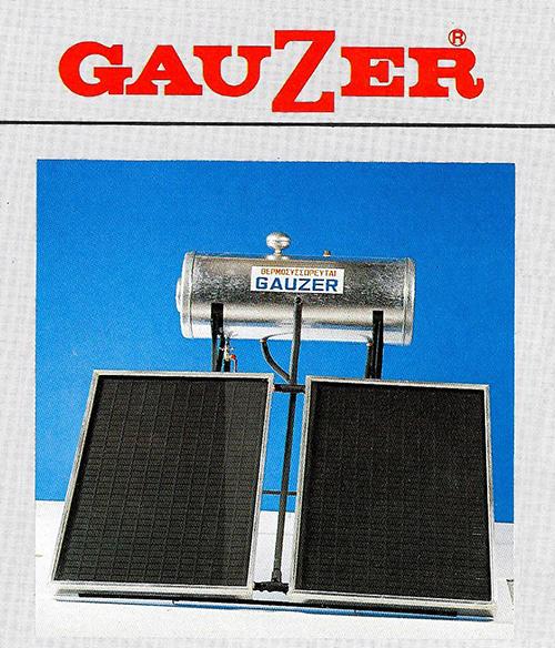 gauzer-first